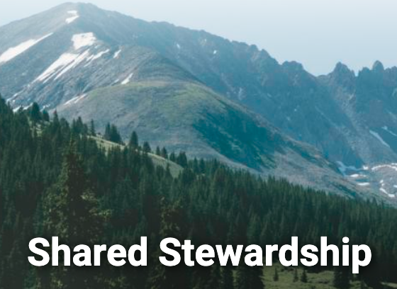 shared-stewardship