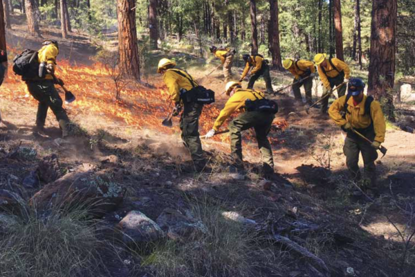 Assesment-community-wildfire-protection